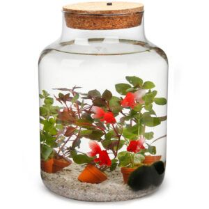 Mooi hoog glas met Kurk incl LED verlichting gevuld met met diverse pantjes en kunststof goudvissen