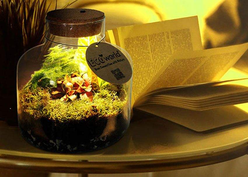 GreenGifts Ecoworld ecosystemen