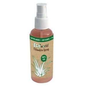 Ook Tillandsia hebben af en toe verzorging nodig! Met de Tillandsia spray biedt u de luchtplantjes alle goede voedingsstoffen